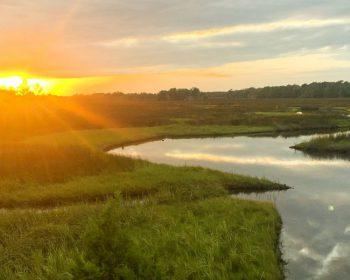 Nassau County's Rich History Tributary